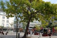 Crédit photo : Crédit J.GROCOLAS - Ville de Lorient