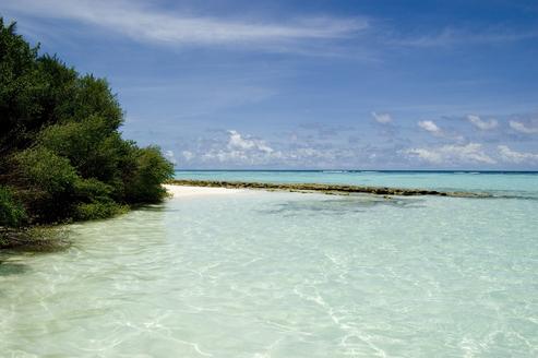 Plongée Maldives