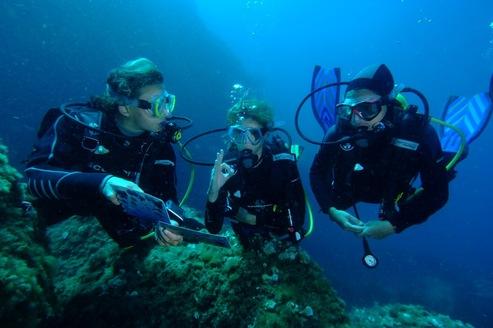 Actualité plongée sous-marine